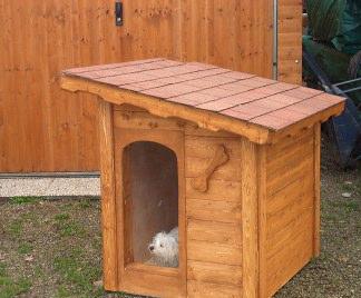 Costruire casette per cani fai da te for Cucce per gatti da esterno coibentate