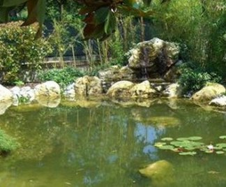 Giardini d acqua for Pompe per laghetti artificiali
