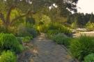 Giardini mediterranei