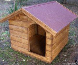 Kit cucce cani