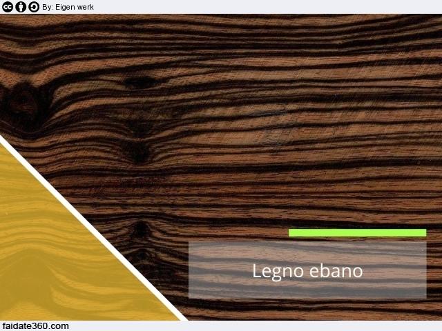 Legno ebano: caratteristiche ed utilizzi di questo legno duro e pregiato