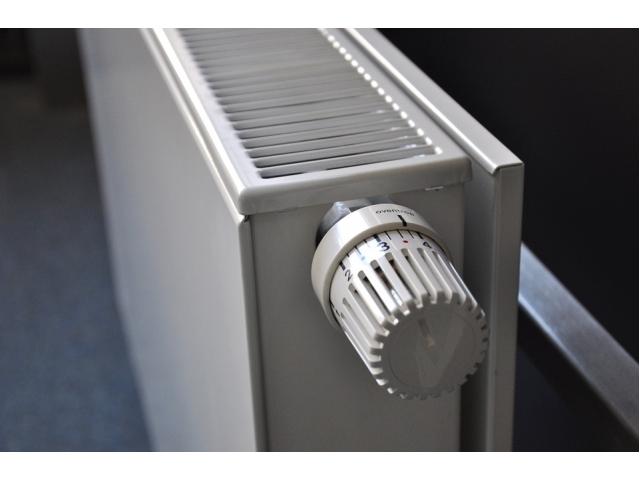 Termosifoni elettrici tipi consumo ed opinioni for Tipi di riscaldamento