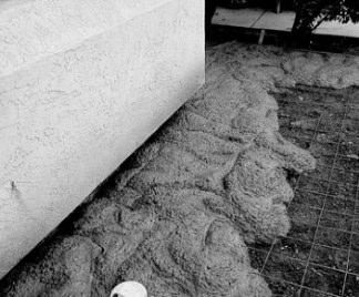 Cemento armato e calcestruzzo