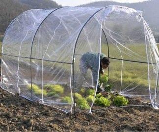 Costruire una piccola serra riscaldata