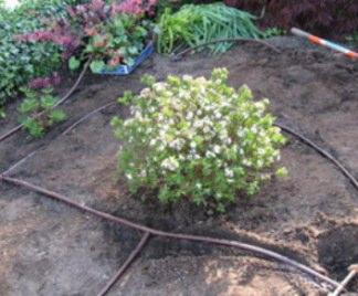 Impianto irrigazione giardino for Irrigazione giardino
