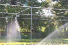 Irrigazione: a che serve? Quando farla? Quali i sistemi adatti? Informazioni e consigli