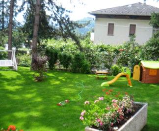 Piante da giardino.