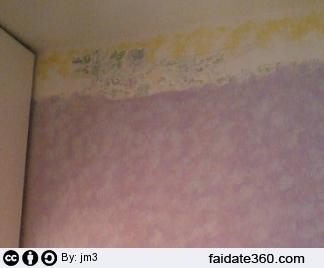Spugnatura pareti.