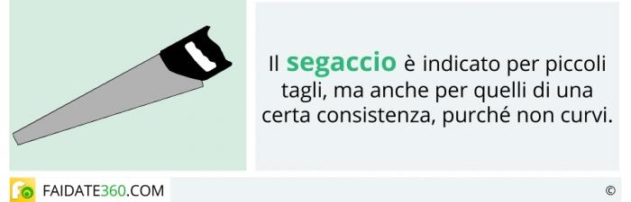 Segaccio