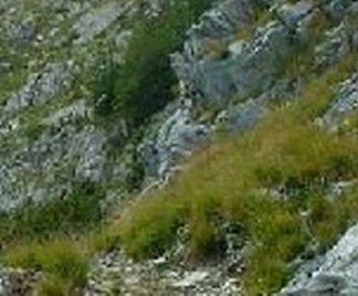 Terreno ghiaioso